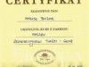 certyfikat-masaz-twarzy-i-glowy